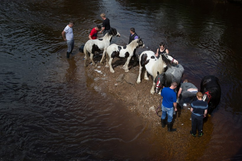 My kingdom for a horse: The story of Appleby Fair