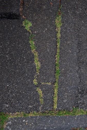Meine Straße